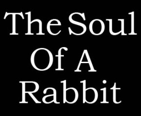The Soul of a Rabbit: Final Chapter
